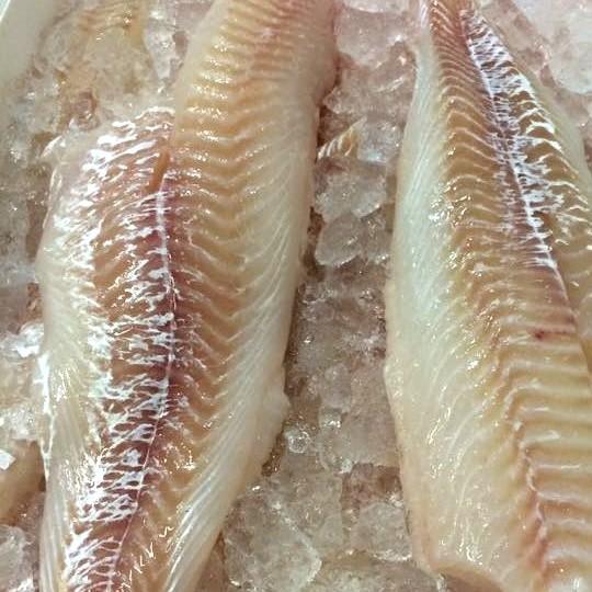 Fisk Torskefilet 4 kg
