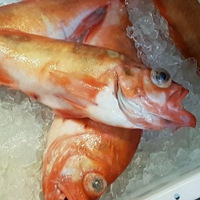 Fisk Rødfisk 2 kg