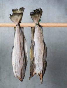 ræstur fiskur - fermenteret fisk