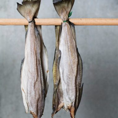 Fermenteret fisk fra Færøerne