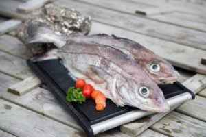 Kuller på dansk, hýsa på færøsk, velegnet til knettir, store fiskeboller.